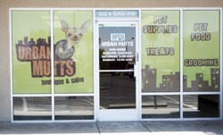window graphics installed on a store in las vegas